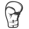 icon_boxhandschuh